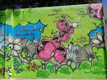 reunion-saint-leu-graffiti