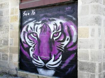 Purple tiger vec