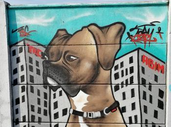 Dog france-saint-nazaire-graffiti