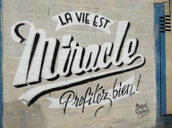 La vie est miracle, profitez bien !