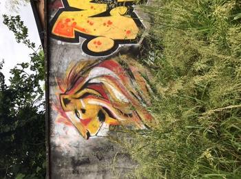 Lion see ya