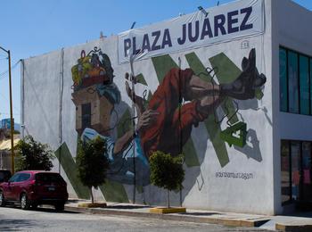 La caída mexico-torreon-graffiti