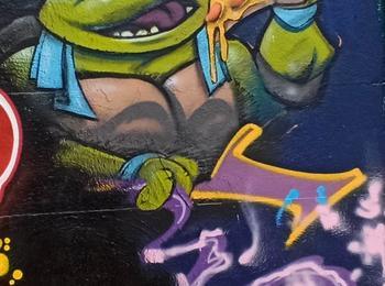 Tortues Ninja, Teenage Mutant Ninja Turtles : Leonardo