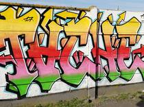 Tashe